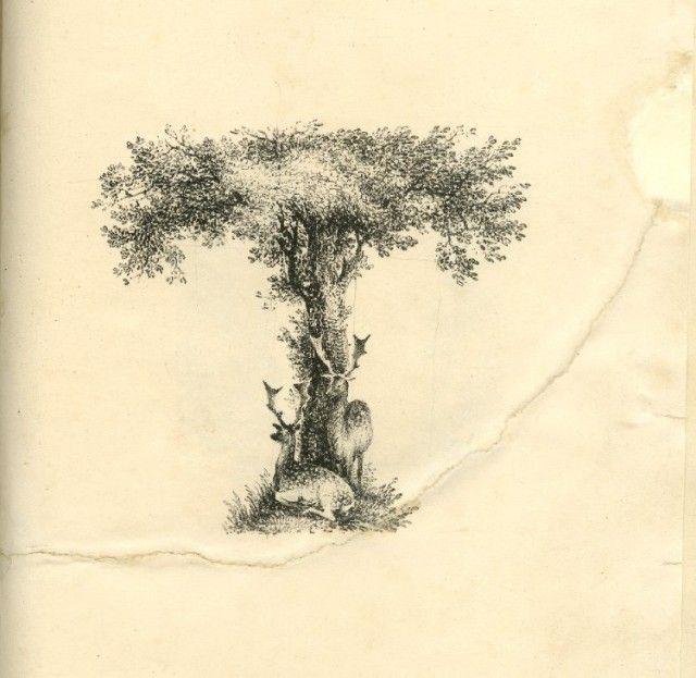 Amazing Landscapes Alphabet-19a