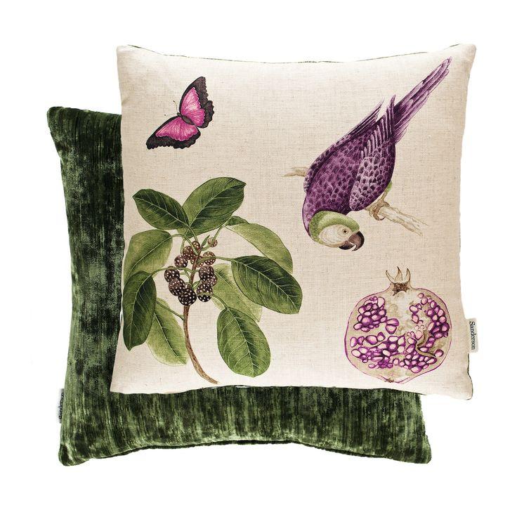 Sanderson Cushions - Filled Cushion Capuchins Parrott Boysenberry 50cm X 50cm
