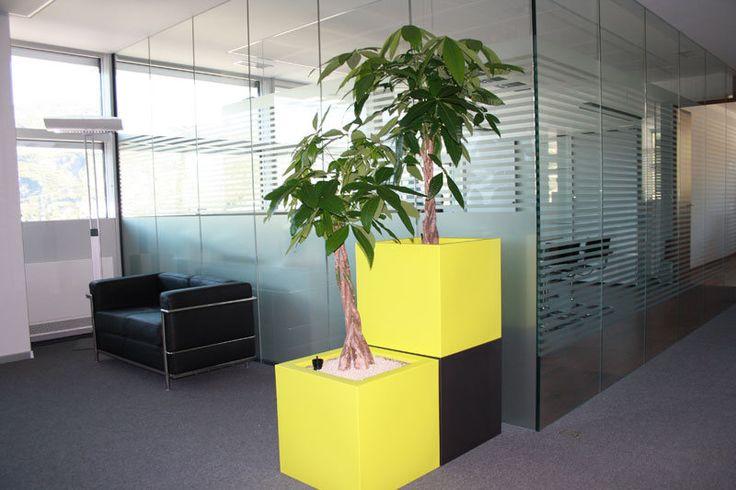 ... Per Ufficio Moderno su Pinterest  Uffici Moderni, Design Per Ufficio