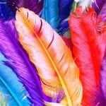 Colori - Sfondi per desktop (ris. 1366x768) Sfondi per desktop (ris. 1366x768), una pagina che ci mostra delle meravigliose foto a colori. - I pregiudizi che molti fotografi nutrono verso la fotografia a colori nascono dal fatto che non pensan #colori #foto #fotografia #desktop