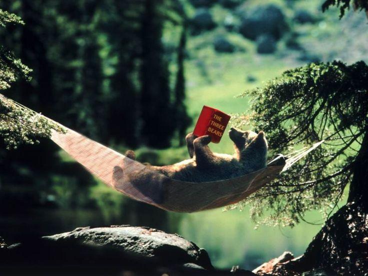 Доброй ночи, дорогие подписчики😊 P.S. Обязательно читайте что-нибудь интересное перед сном...