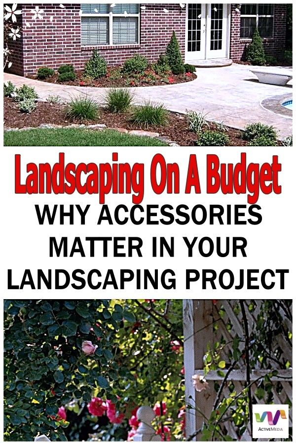 Using The Right Plants In Your Landscaping Budget Landscaping Landscape Landscape Projects