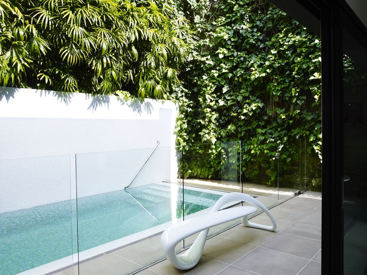 Pool with Rhapis excelsa and Hedera canariensis