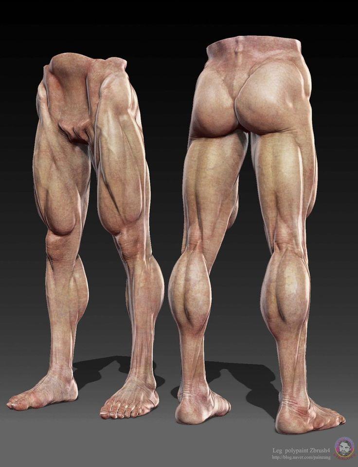 Perfecto Músculos Marcados De La Carrocería Galería - Imágenes de ...