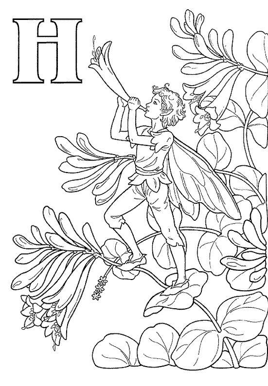 kleurplaat Alfabet Elfjes - Alfabet Elfjes H