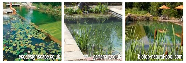 Awesome DIY Natural Pools U2013 Build Your Own Swimming Pond   SPP Inground Pool Kit  Blog   Just Cool   Pinterest   Pool Designs, Natural Swimming Ponds And Hot  Tubs