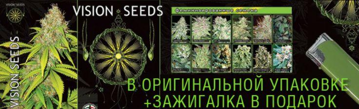 seeds18.ru семена конопли,семя конопли,купить конопли семени,купить семена конопли,куплю семена конопли,куплю семя конопли,купить семя коноп...