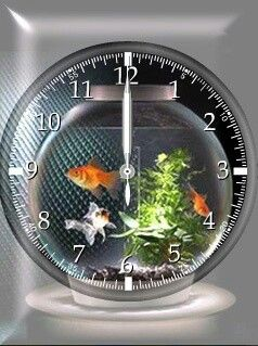 125 best home for a fish images on pinterest fish tanks - Fish clock aquarium ...
