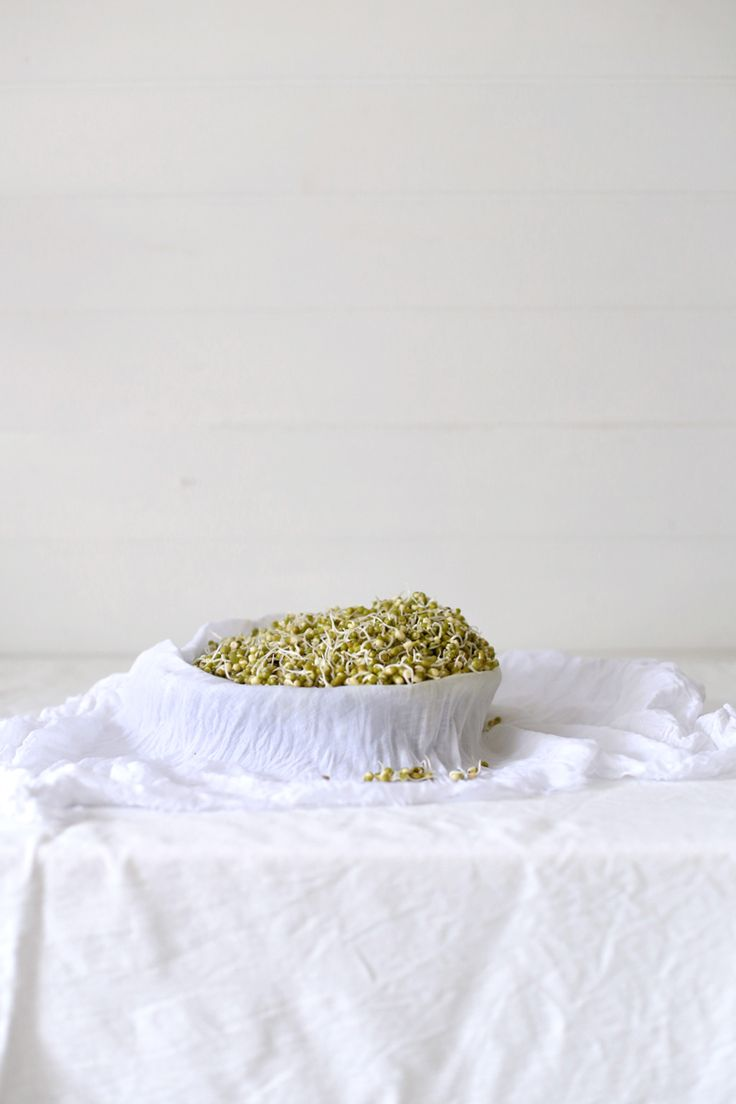 The Slowpoke: SPROUTS // #homemade #easy #simple #wellbeing #recipe #howto
