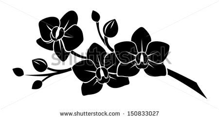 stock-vector-black-silhouette-of-orchid-flowers-vector-illustration-150833027.jpg (450×245)