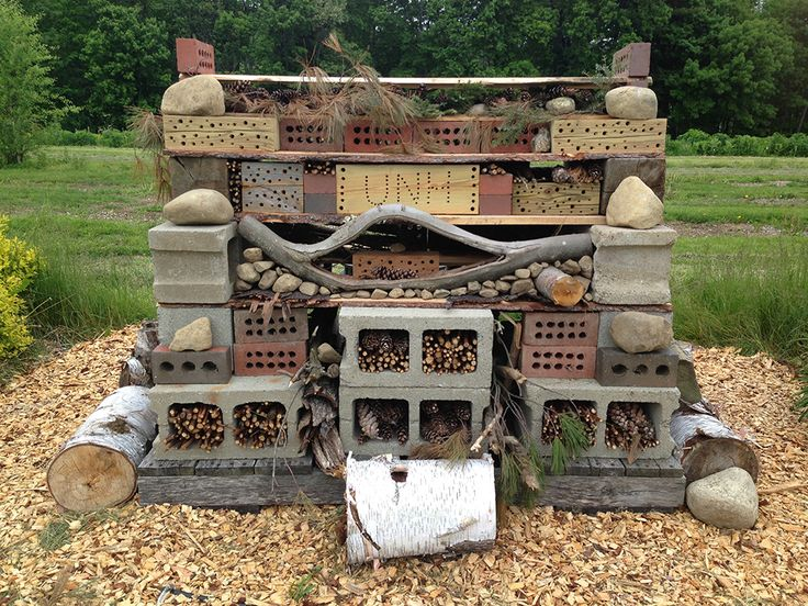 DURHAM, N.H. – Visitors to this year's NH Farm and Forest Expo in Manchester will have a chance to see what the accommodations are like for bees buzzing around Woodman Farm at the University of New Hampshire. A rendition of UNH's Bee Hotel, which is part of a research project at the NH Agricultural Experiment…