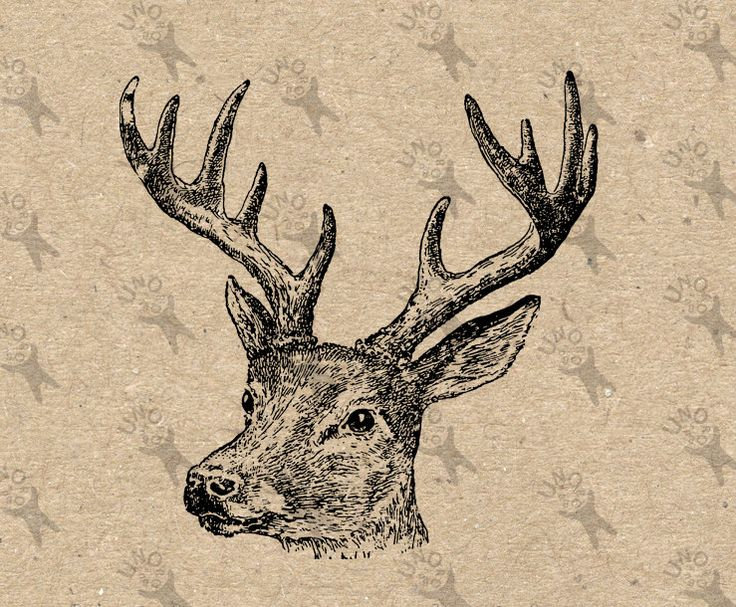 Deer vintage image Instant Download Digital printable clipart graphic Burlap Fabric Transfer Iron On Pillows Totes Tea Towels  etc HQ 300dpi by UnoPrint on Etsy