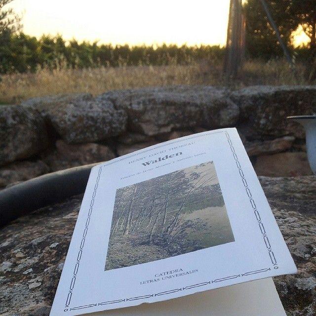 """""""Lecturas de Verano: Walden, Thoreau #book #summer #literature #poetry"""""""