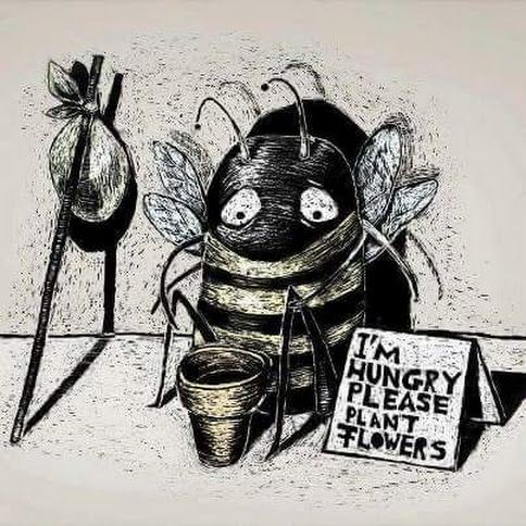 Save the bees  be vegan