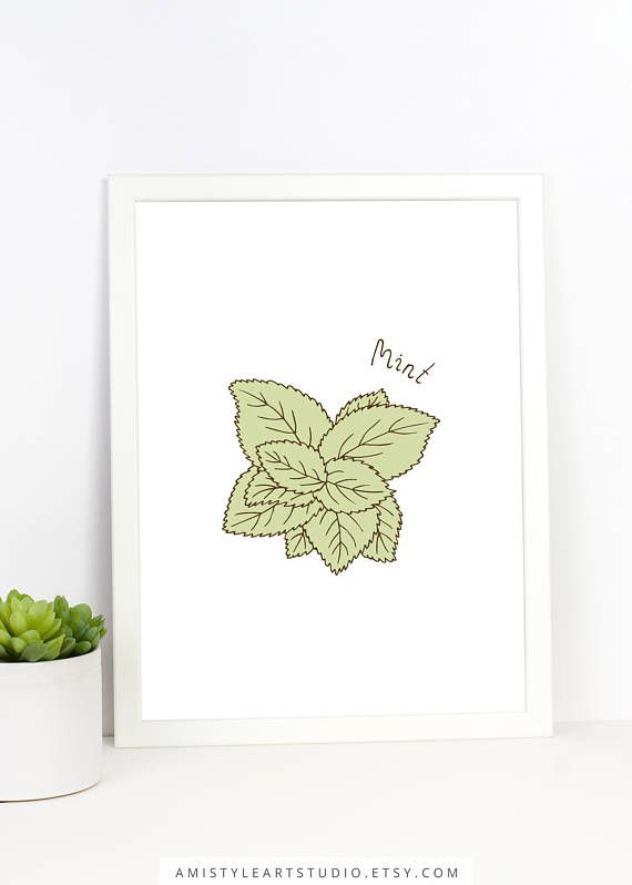 Herbs Wall Art - Mint - printable kitchen decor with hand drawn botanical mint by Amistyle Art Studio on Etsy