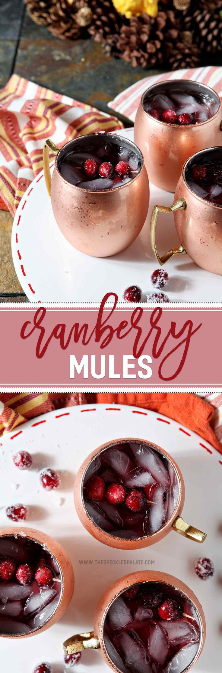 The Cranberry Mule is a fun take on the more traditional Moscow Mule. Perfect as a Thanksgiving cocktail, this drink calls for cranberry, ginger beer and spiced rum, then is topped with sugared cranberries as garnish.