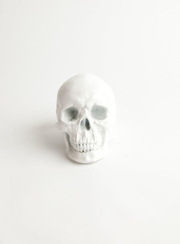 blanc | white | bianco | 白 | belyj | gwyn | color | texture | form | skull