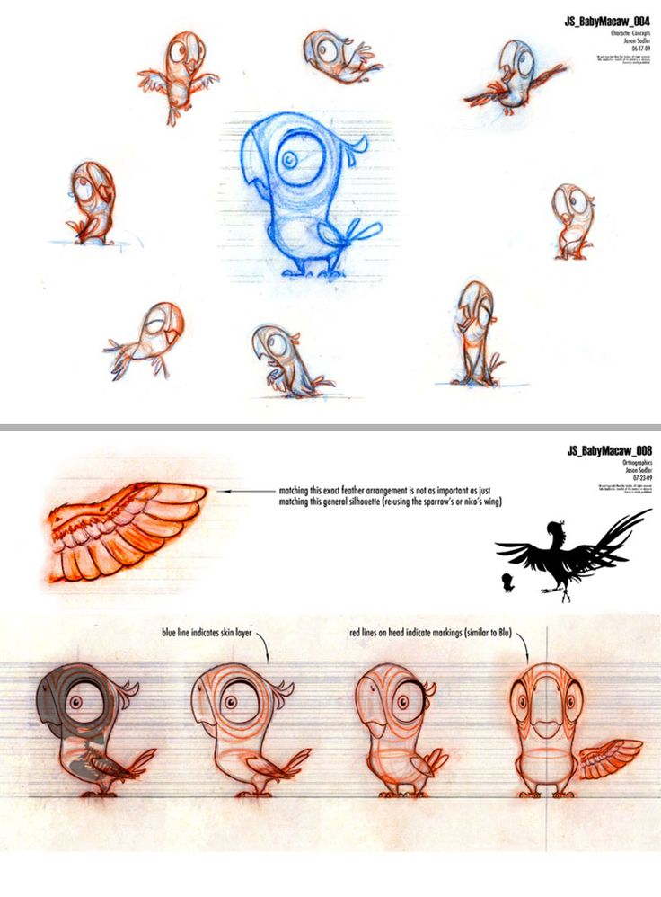 Cute little bird character concept sketches / studies by Jason Sadler for movie RIO