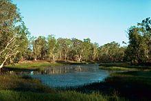 Billabong, Northern Territory