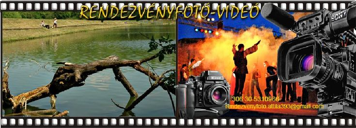 My company by Event photo- video