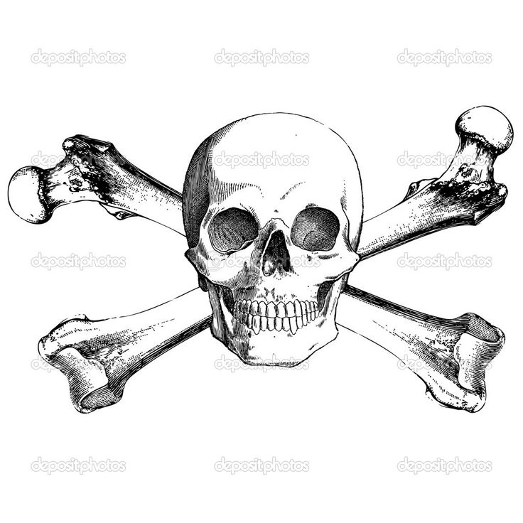 Image result for single needle skull and crossbones tattoo