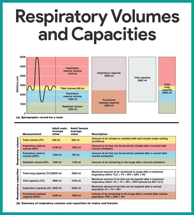 Respiratory Volumes and Capacities-Respiratory System Anatomy and Physiology    https://nurseslabs.com/respiratory-system/