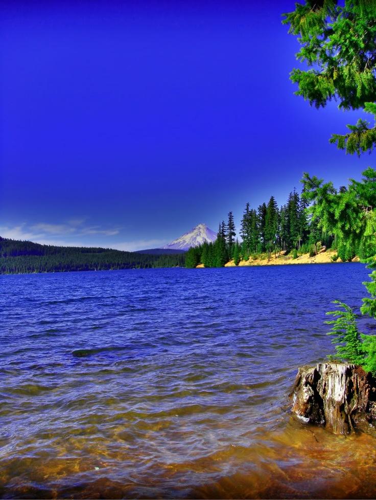 Timothy Lake Challenge BikeIt Meander through the