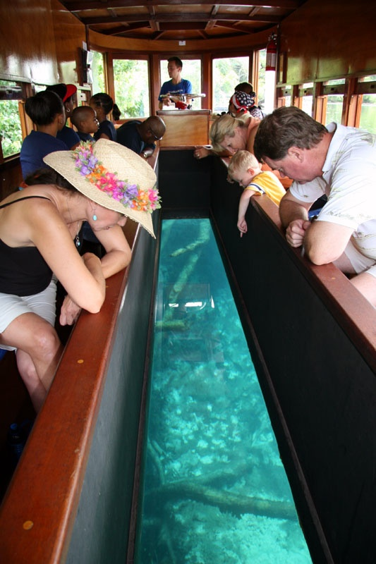 San Marcos, Tx. Glass bottom boat. Not much marine life to see but a neat experience none the less.