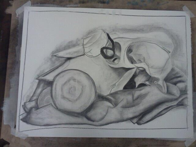 charcoal sketch i did of a cow skull, goggles and a light bulb and tennis ball sitting on a blanket