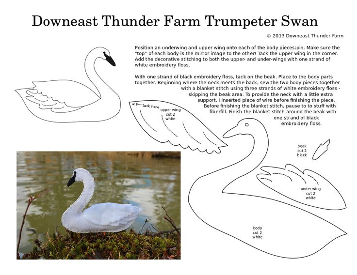 A reader recently requested a trumpeter swan – the first such request I've received. I loved the idea and had fun coming up with the design for this double-sided felt swan ornament. I t…