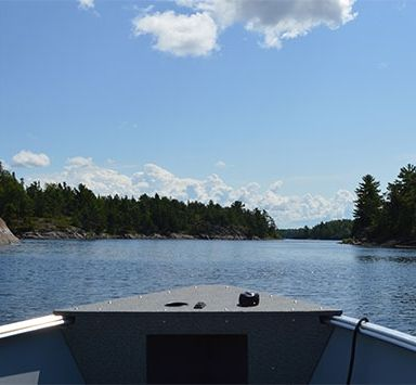 Explore French River at Bear's Den Lodge.
