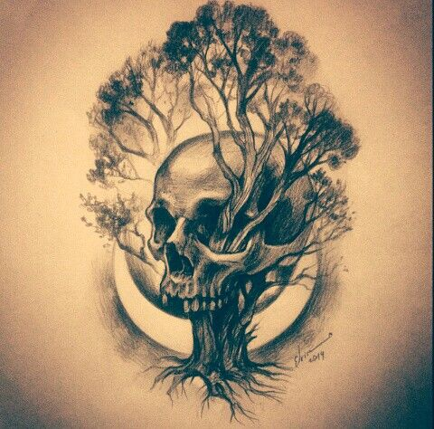 Skull tree life illustration