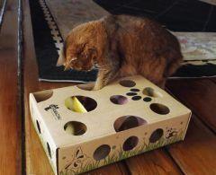 10 jouets pour chats très mignons à bricoler soi-même