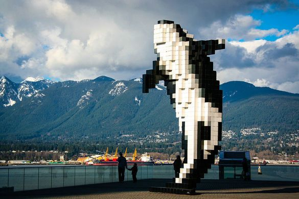 A pixel art killer whale is frozen mid-leap in this Vancouver square.