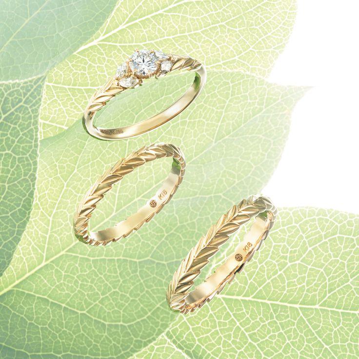 laurel #NOVARESE #NOVARESE Prima #Prima #wedding #accessory #ring #pair #original #engagement #marraige #ノバレーゼ #ノバレーゼプリマ #結婚指輪 #婚約指輪 #指輪 #ローレル #月桂樹