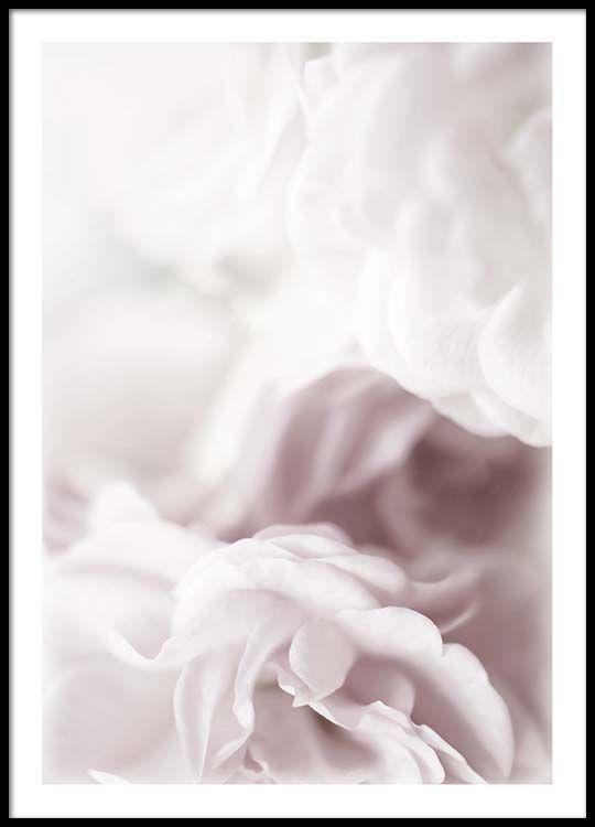 Dusty rose Poster in der Gruppe Poster / Größen und Formate / 30x40cm bei Desenio AB (2264)