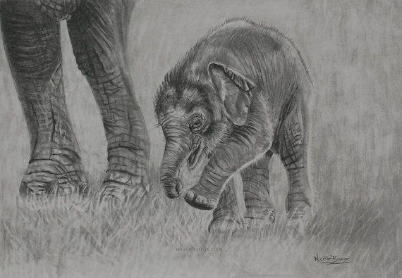 Original Pencil Drawing OOAK Baby Elephant by NicoleBarrosArt