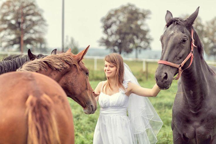 Justyna i Marek swój wymarzony plener zapragnęli mieć w stadninie koni k/Bydgoszczy
