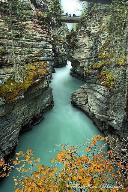 Autumn in Sunwapta Falls Canyon, Alberta, Canada
