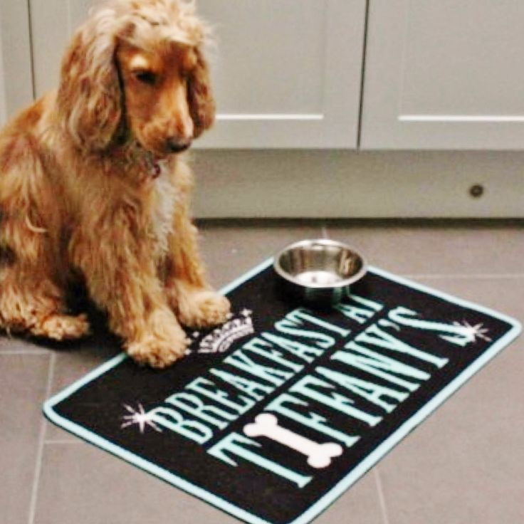 Absorbent food mat for dogs and pets BREAKFAST AT TIFFANY'S by www.blissandbloom.co.uk