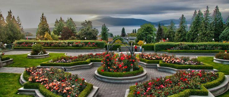 UBC - Rose Garden in full bloom!
