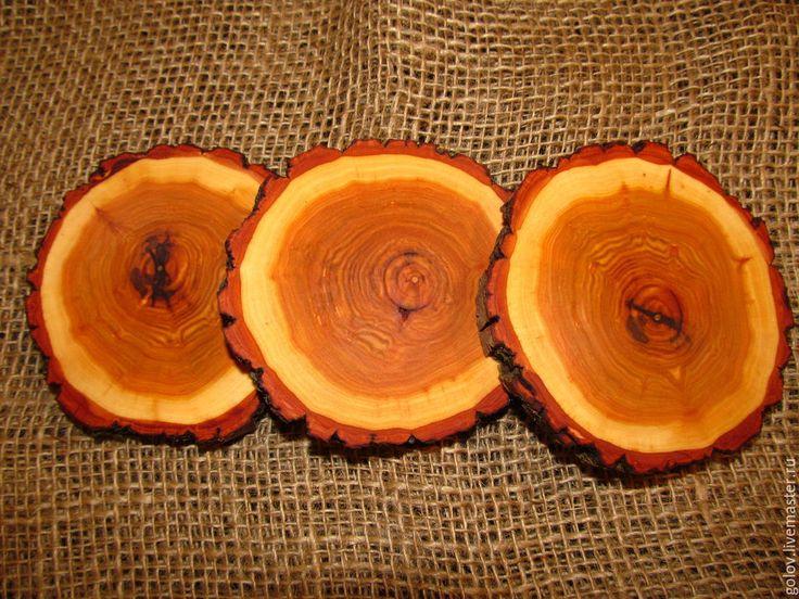 Купить спил дерева - спилы дерева, деревянные спилы, дерево, пеньки деревянные, декоративные материалы