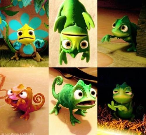 Pascal is just so cute. :)