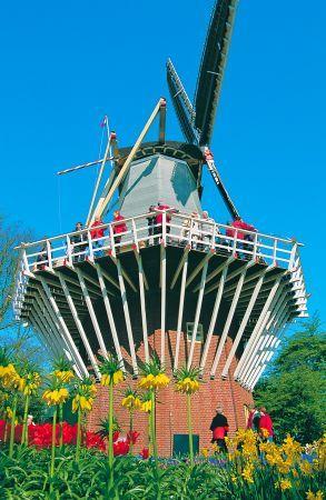 Ogrody Keukenhof, Holandia