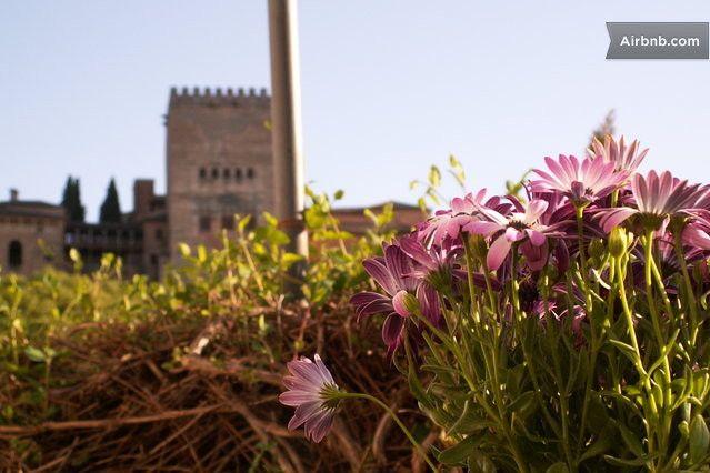 Granada . vistes alhambra 86 + 24