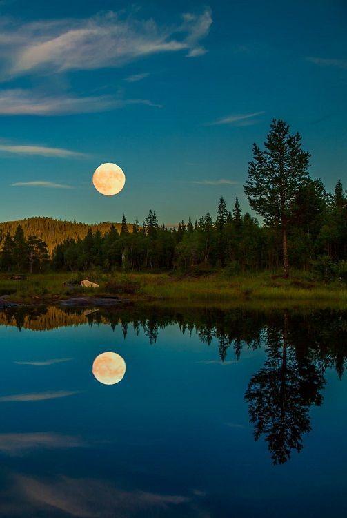 наш-удивительный-мир:  Летние ночи