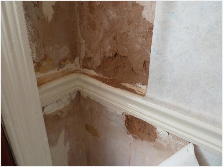 428 24 Drywall Repair After Wallpaper Removal Ideas Drywall Repair Removable Wallpaper Removable Wallpaper Bathroom