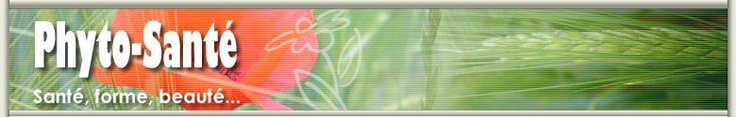 Astragalus membranaceus    Noms communs :  Astragale.    Description :  Cette légumineuse est utilisée depuis les temps anciens dans la médecine chinoise traditionnelle pour aider le Qi, défenseur de l'organisme.