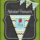 I love the trend of pennants for classroom decor.  Pennants are fun and functional.  This set includes alphabet pennants. Each letter has the capit...