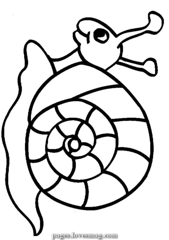 Creative And Great Animals For Coloring Animal Snail Drawings For Coloring Animal Coloring Pages Coloring Pages Cool Coloring Pages
